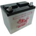 Batterie Tondeuse U1R-9 12V 24Ah