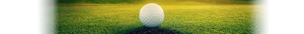 Batterie pour chariot de golf